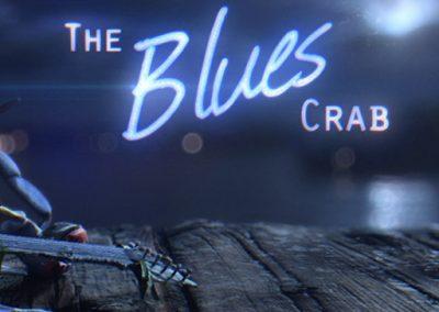 Ari Rubenstein – The Blues Crab